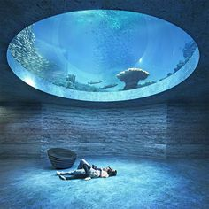 boltshauser architekten beats zaha hadid + MVRDV to design basel aquarium Zaha Hadid, Aquarium Design, Aquarium Architecture, Interior Architecture, Basel, Win Competitions, Pool Designs, Beautiful Places, House Design