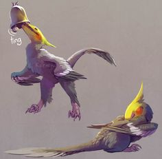 """Draw Creatures It's fun to say """"I have a pet dinosaur."""" Technically it's not a lie, what with birds being avian dinosaurs and all, but I thought it'd be fun to draw a """"proper"""" dinosaur with cockatiel coloration - Creature Drawings, Animal Drawings, Cute Drawings, Mythical Creatures Art, Prehistoric Creatures, Prehistoric Dinosaurs, Creature Concept Art, Creature Design, Fantasy Kunst"""