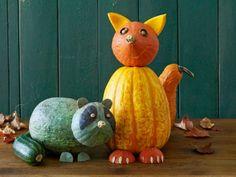 Curious gourd animals
