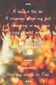 Oh how I love Fall~Harvest~Autumn Autumn Day, Hello Autumn, I Fall, Autumn Leaves, Fall Days, Seasons Of The Year, Best Seasons, Bliss, Happy Fall Y'all
