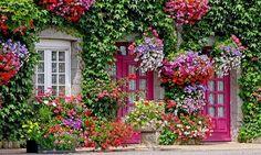Okrasná zahrada v srpnu
