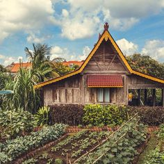 We love the sprawling organic gardens at Desa Seni - a quiet corner of paradise in #bali The eco chic retreat has a perfect restaurant for long, lazy feasts which show off the best of the garden and sea beyond