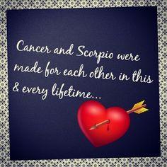 Scorpio Traits Male, Taurus And Scorpio, Zodiac Signs Scorpio, Zodiac Traits, Scorpio Facts, Zodiac Love, My Zodiac Sign, Scorpio Female, Frases