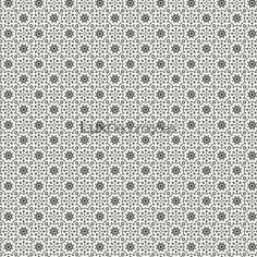 Black & White 2  BW28717