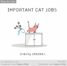 important cat jobs Crazy Cat Lady, Crazy Cats, I Love Cats, Cool Cats, Funny Cats, Funny Animals, Cat Jokes, Cat Comics, Pretty Cats