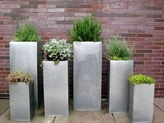 Go container crazy with upright metal planters. I love the varying colors of foliage and how well they're set off by the silver sheen. Landscape design by Urban Roots in Denver CO. For more container ideas visit: Urban Garden Design, Herb Garden Design, Urban Design, Garden Art, Modern Design, Balcony Herb Gardens, Outdoor Gardens, Easy Garden, Indoor Garden