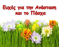 Spring mood for Easter wallpapers and images - wallpapers . Easter Wallpaper, My Wish For You, Famous Quotes, Happy Easter, Holiday Fun, Blessed, Herbs, Seasons, Spring