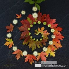 Early autumn leaves with flowers and buds arranged in a spiral on black sand.
