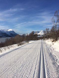 Skitur til Gjevilvasshytta -14