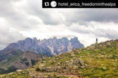 Oggi le cime delle montagne sono rimaste un po nascoste dietro le nuvole ma noi le abbiamo apprezzate ugualmente! #hotelericawalking #freedominthealps #paledisanmartino #trentino  #Repost @hotel_erica_freedominthealps