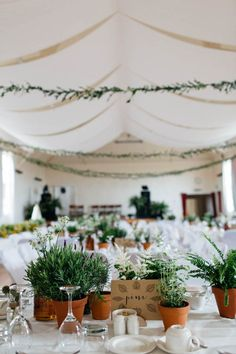 Portnahaven Hall Wedding Went Totally Natural By Decorating With Potted Plants Terra Cotta potted plant table decor Summer Wedding Bouquets, Rose Wedding Bouquet, Wedding Flowers, Peacock Wedding, Wedding Dresses, Purple Wedding, Wedding Colors, Dream Wedding, Potted Plant Centerpieces