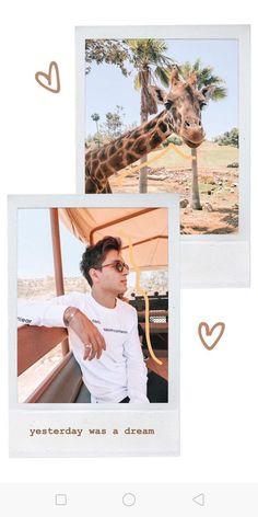 Creative Instagram Photo Ideas, Instagram Story Ideas, Jess Conte Instagram, Birthday Post Instagram, Happy Birthday Posters, Instagram Editing Apps, Instagram Frame Template, Photo Collage Template, Instagram Background