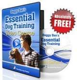 Doggy Dan's Online Dog Trainer  - Revolutionary Dog & Puppy Online Video Training Covers Every Problem! S.P.C.A. Endorsed.