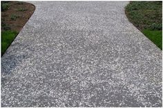 Oyster Shell Concrete Driveway With Brick Paver Apron