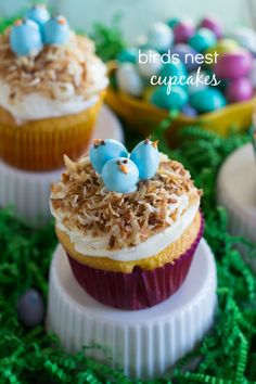 """{EASY} BIRD'S NEST CUPCAKES - An easy yellow cupcake base topped with frosting, toasted coconut, and miniature """"birds"""" made from M&M's and frosting."""