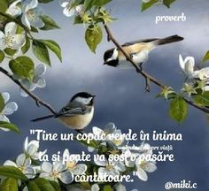 Proverbs, Animals, Animales, Animaux, Powerful Quotes, Animal, Animais, Idioms