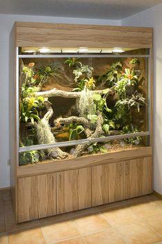 290 cm langes w sten terrarium als einbau schrankwand terrarium pinterest bartagame. Black Bedroom Furniture Sets. Home Design Ideas