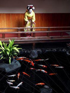 Maiko Katsune at a Kamishichiken theatre's pond with carps (SOURCE)