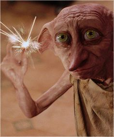 Favorite nonhuman character: Dobby. Also, favorite movie theatre movement: when everyone including the middle-aged men and 5-year-old boys sobbed during Dobby's burial scene at the midnight premiere of HP7.1