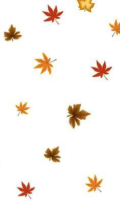 iPhone Wallpaper - Thanksgiving tjn