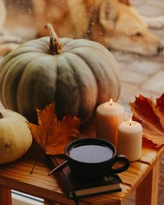 Autumn Witch, Autumn Cozy, Fall Winter, Autumn Aesthetic, Fall Wallpaper, Happy Fall Y'all, Autumn Photography, Fall Pictures, Hello Autumn