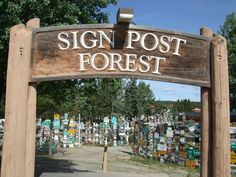 Sign Post Forest, Alberta, Canada