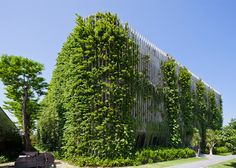 Plants climb all over vertical concrete louvres surrounding the facades of this holiday resort on the Vietnamese coastline.