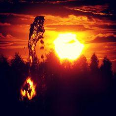 #sunset #water #forest - #zachodslonca #woda #las