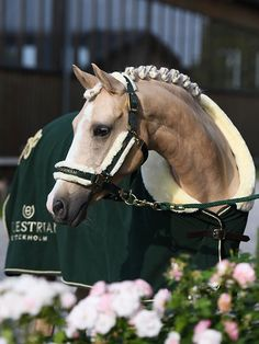 Order Fleece Rug fur, Forest Green from Equestrian Stockholm ✓ Worldwide Shipping ✓ Fast Delivery ☆ Unique Selection of Riding Wear & Accessories. Equestrian Outfits, Equestrian Style, Pretty Horses, Beautiful Horses, Caballo Haflinger, Horse Rugs, Horse Pictures, Horse Photography, Horse Girl