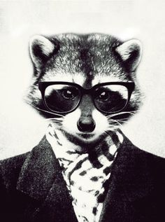 hipster raccoon by xMaJest1Cx on deviantART