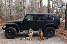 My four door black jeep jk Sahara with aev lift and nitto trailgrapplers and German shepherd dogs