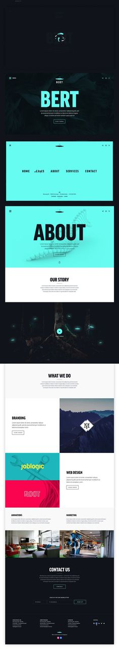 Bert branding & website
