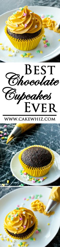 These CHOCOLATE CUPCAKES are the BEST! Seriously, the best! Soft and moist and packed with delicious chocolate flavor! From cakewhiz.com