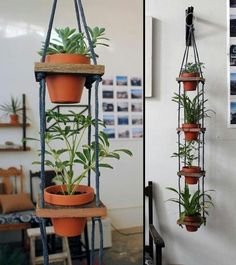 DIY Hanging planter, Check this out!