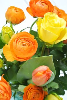 Brighten up with a bouquet of ranunculus.
