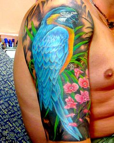 parrot tattoo - Google Search