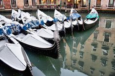 20 Great Things to do in Venice 12/20 – Tour of Venice