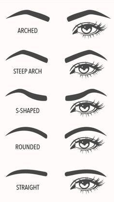 eyebrow shapes visual guide