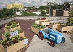 ORTETTO - Il nuovo orto urbano sul tetto del Lanificio realizzato da Ortogenuino #ortiurbani #organicfood #bio #vegetable #vegetarian #organicvegetables #urbanfarming #mygarden #ortogenuino #km0 #metri0 #orto #lanificio #roma