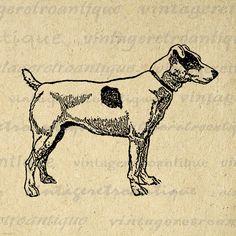 Fox Terrier Dog Image Graphic Printable Illustration Digital Download Antique Clip Art Jpg Png Eps 18x18 HQ 300dpi No.3080 @ vintageretroantique.etsy.com
