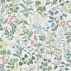 Flora by Boråstapeter - White - Wallpaper : Wallpaper Direct More Wallpaper, White Wallpaper, Peal And Stick Wallpaper, Wallpaper Online, Wall Wallpaper, Bleu Pastel, Vibrant Colors, Colours, Botanical Wallpaper