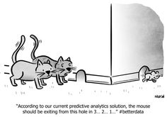 Translating Analytics to Action: Right Metrics, Right Time Right Time, Business Intelligence, Data Science, Digital Marketing, Coaching, Humor, This Or That Questions, Action, Twitter