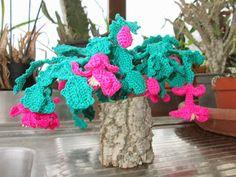 Cactus di Natale http://donyscreations.blogspot.it/
