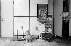 musashiurawa station . saitama ++ sungman richard cho yoshida