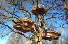 Treehouse hotel.  France.