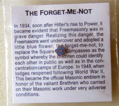 I am amazed at how many do not know this little fact Forget-Me-Not Masonic Lapel Pin