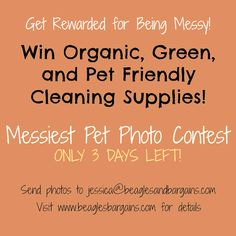 Luna is searching for messy pets everywhere. Enter our Messiest Pet Photo Contest by Friday 10/18. Visit the blog for details!