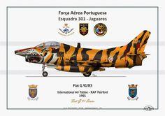 FIAT G-91 FORÇA AÉREA PORTUGUESA