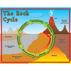 25 Ideas Science Experiments For Middle School Rock Cycle Rock Science, Science Fair, Science Lessons, Science Experiments, Science Activities For Kids, Science Classroom, Teaching Science, Science Education, Physical Science