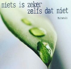 Niets is zeker.L Loe Life Coach Quotes, Dutch Words, Dutch Quotes, Quote Posters, Good Thoughts, Worlds Of Fun, Beautiful Words, Positive Vibes, Life Lessons